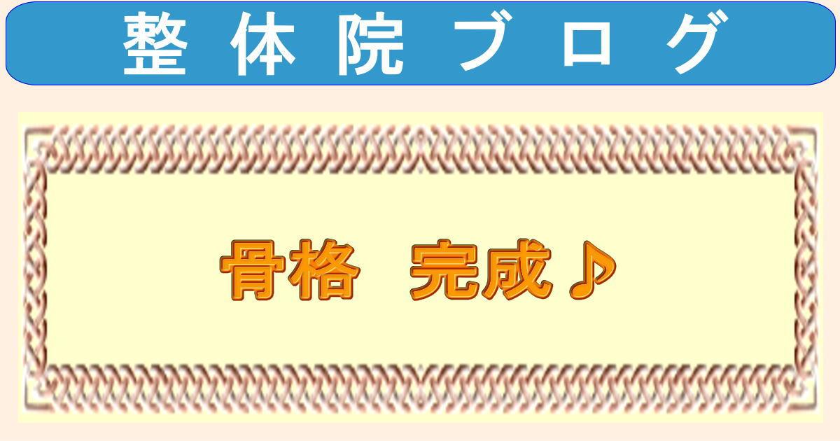 [お店]骨格 完成\(◎o◎)/!